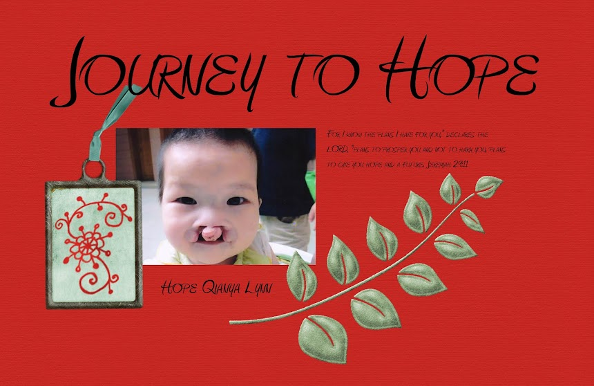 Journey to Baby Hope