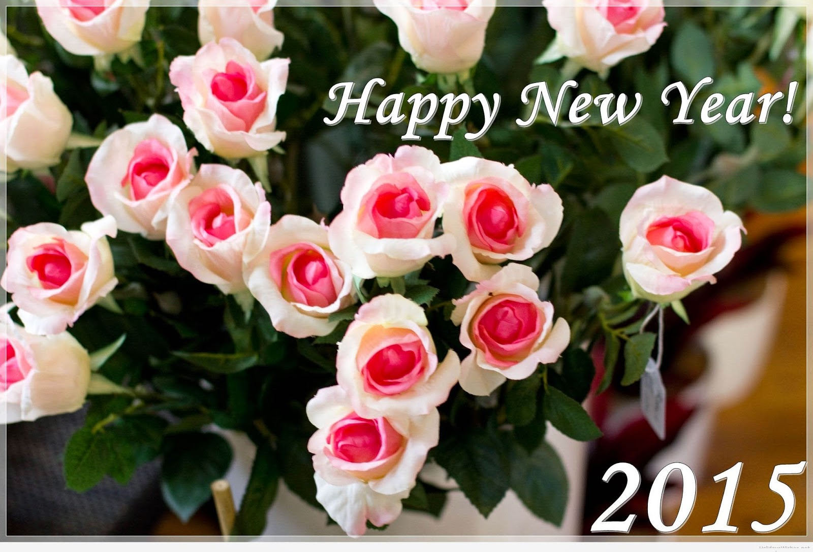 Top Class New Year 2015 eCards – Latest Photo Cards For Roses