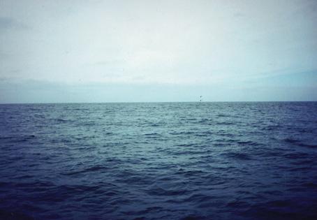 Mar Mar2