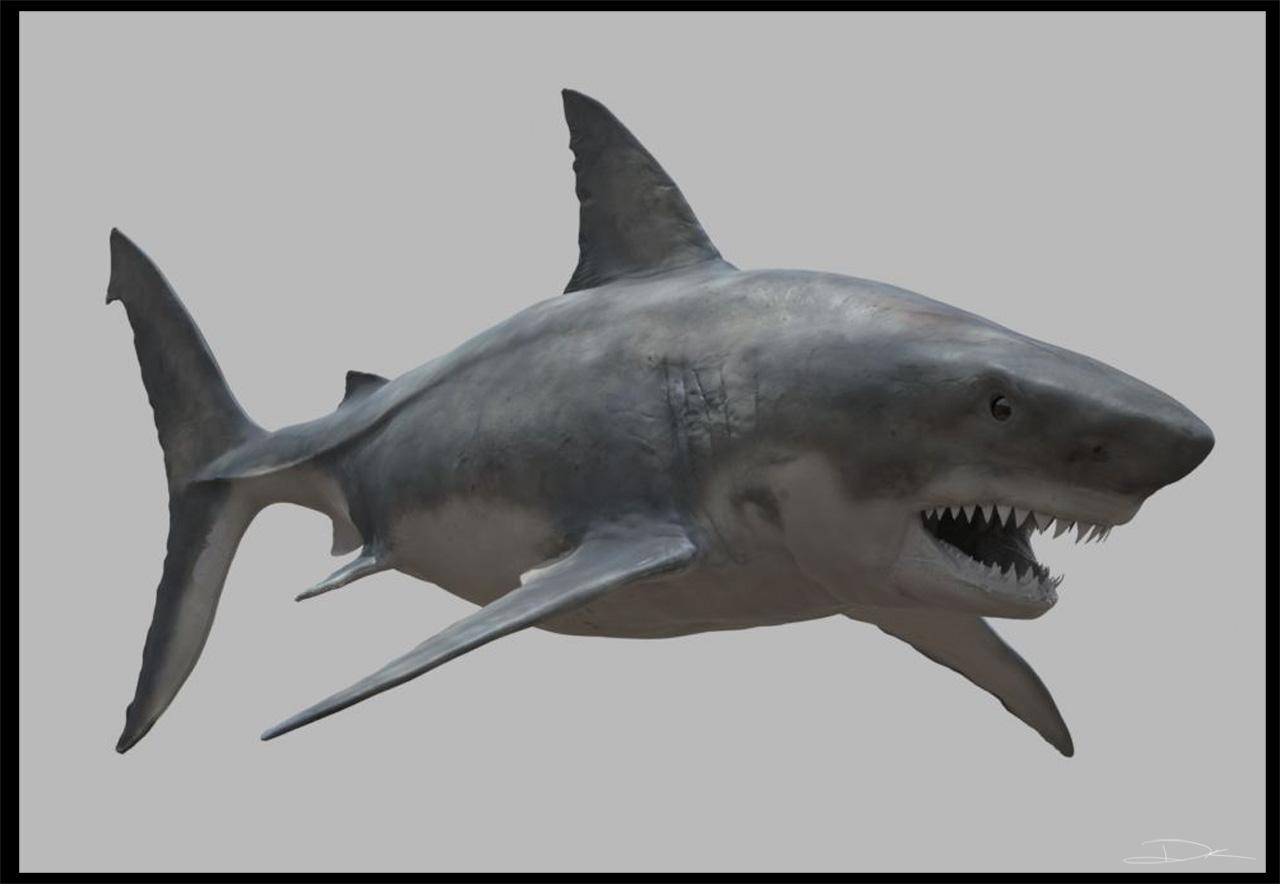 Kirouac Learns To Sculpt: Shark Texture WorkInProgress