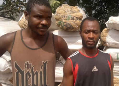 Two Arrested while Selling 295 Bags of Cannabis Worth N35m for Christmas