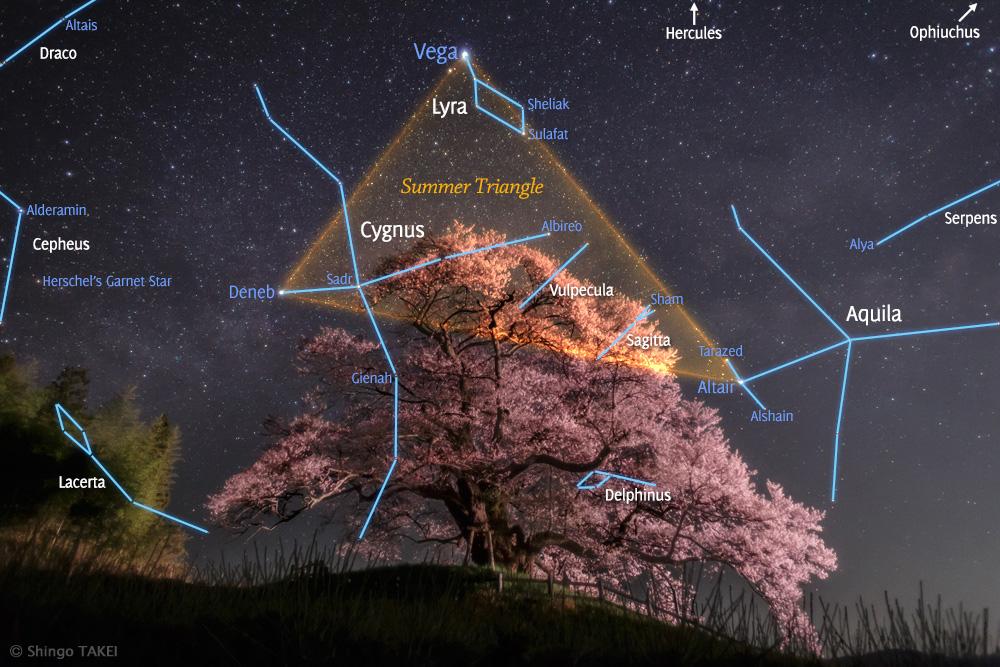 Các chòm sao trên bầu trời Gunma, nước Nhật Bản. Tác giả : Shingo Takei.