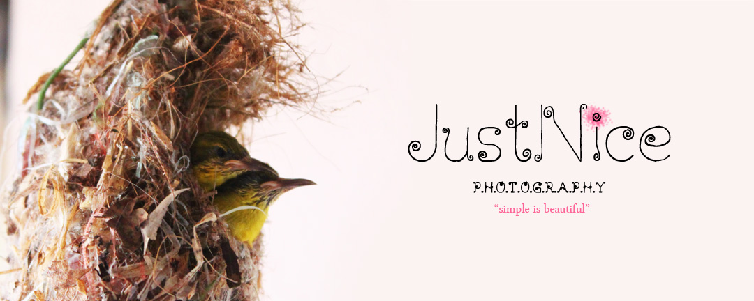 justnice photography
