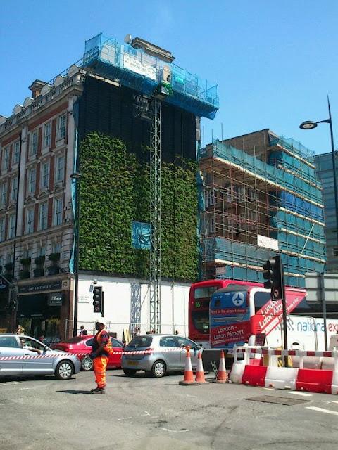 green wall london