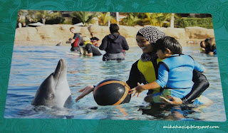 dolphin encounter dubai reviews