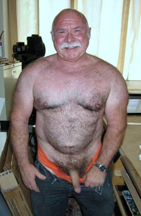 silver daddies | polar bear gay oldermen