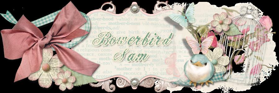 Bowerbird Sam