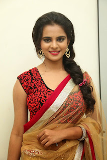 Actress Manasa Picture Gallery in Saree at Rowdy Fellow Movie Audio Launch  014.jpg