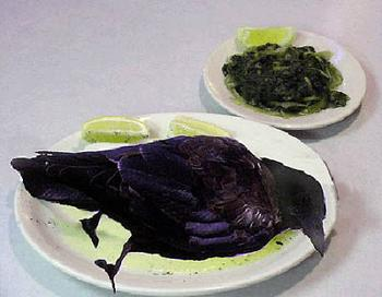 eating crow