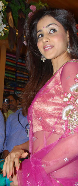 genelia hot navel show in saree