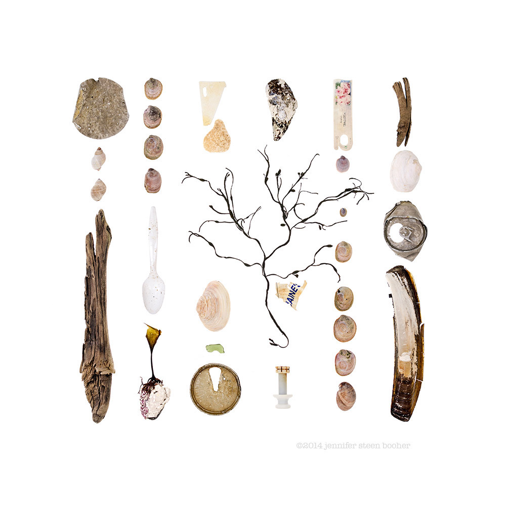 http://jenniferbooher.com/wp/hulls-cove-maine-march-6-2014-beachcombing-series-no-73/