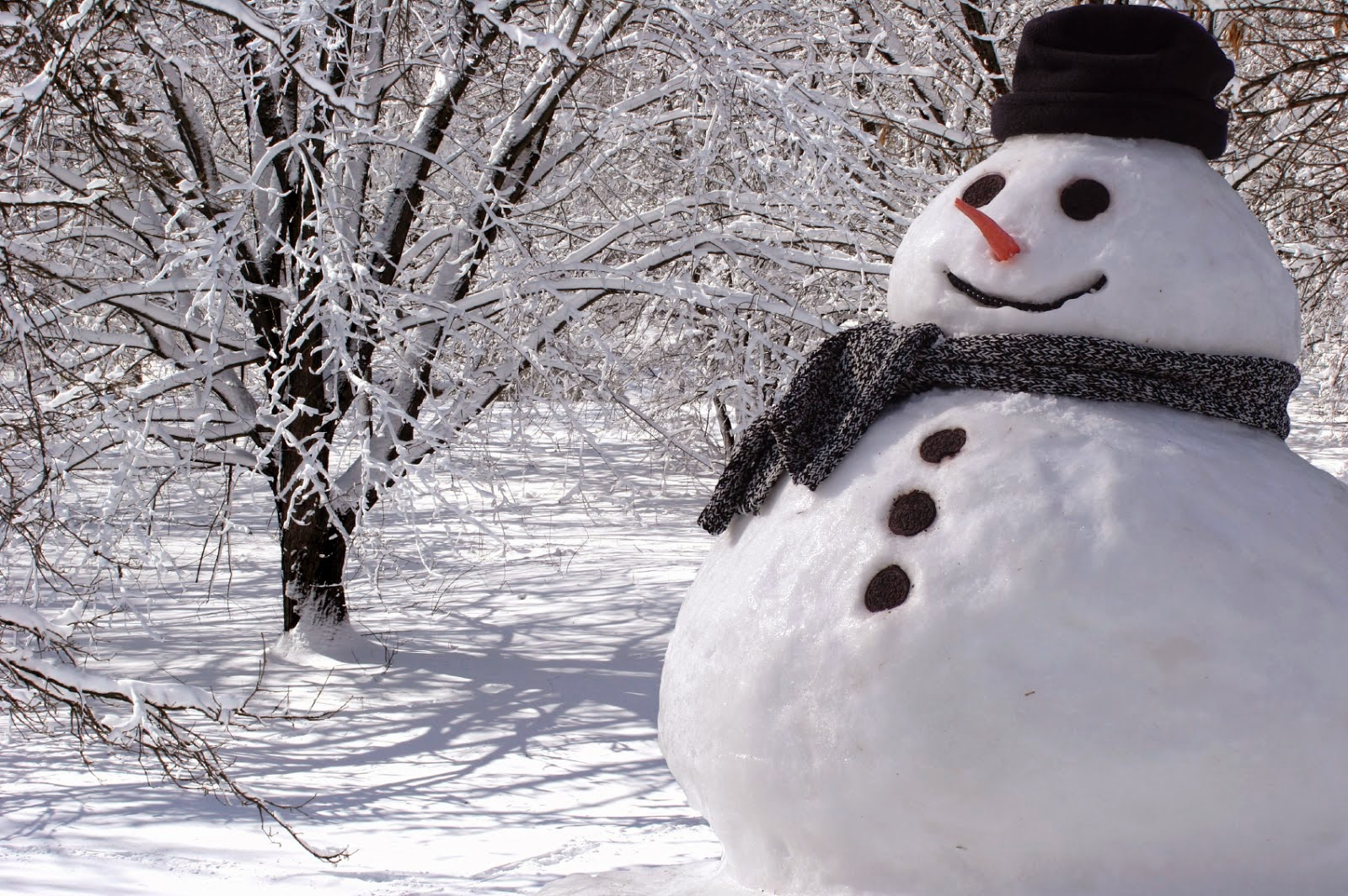 8 Ways to Enjoy an Unpredicted Snow Day