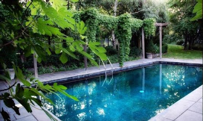 Funny pictures gallery cool swimming pools deepest pool for Deep swimming pools for garden