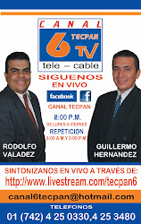 CANAL 6 TECPAN TV TELE  - CABLE