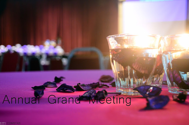 COMSTAR Annual Grand Meeting 2015