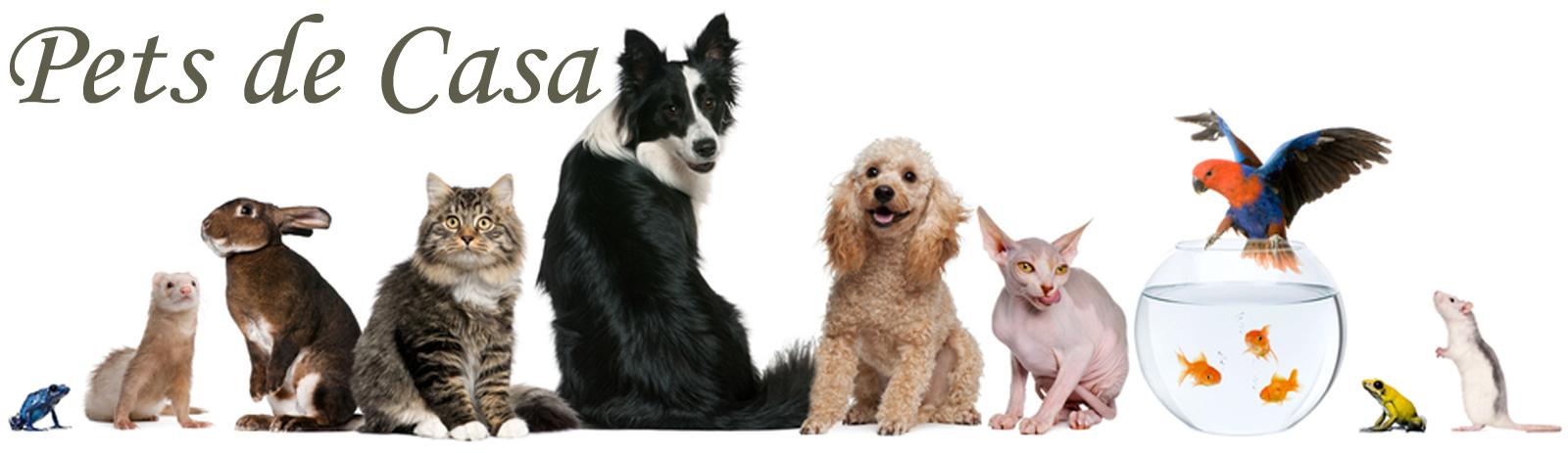 Pets de Casa