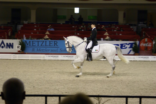 horse riding dressage Germany