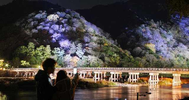 Arashiyama Hanatōro (flower and light road), Kyoto