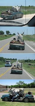 Ko(nstig) transport