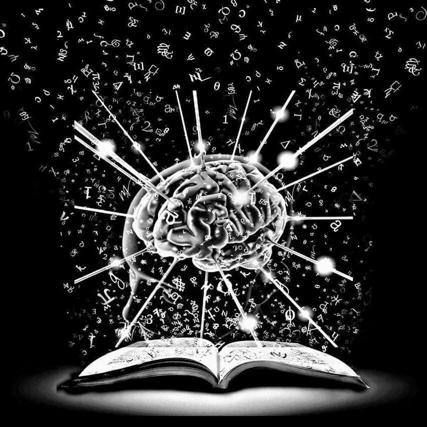 Jual Ensiklopedia Junior Tubuh Manusia Tubuh kita HC Buku