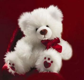 Sweet cute teddy bear wallpapers - photo#2