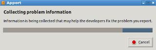 Ubuntu 12.04, Lubuntu 12.04, Kubuntu 12.04 and Xubuntu 12.04 has experience internal error collecting problem information