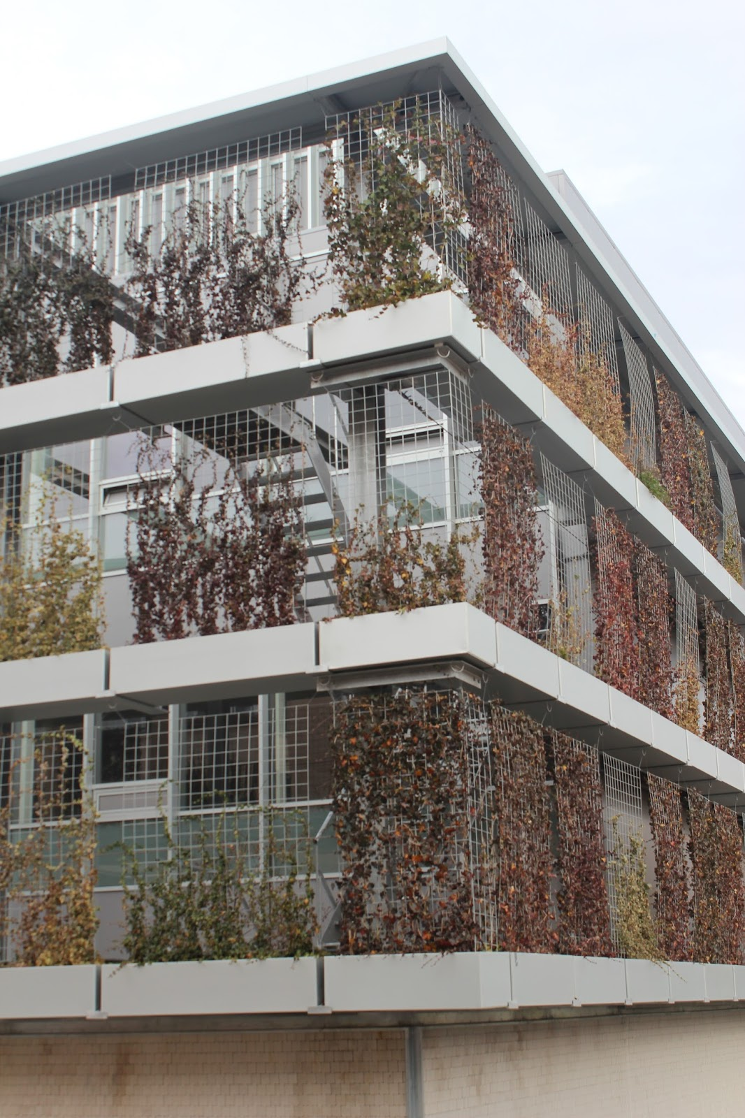Fachadas verdes logro o arquitectura ingenio - Arquitectos logrono ...