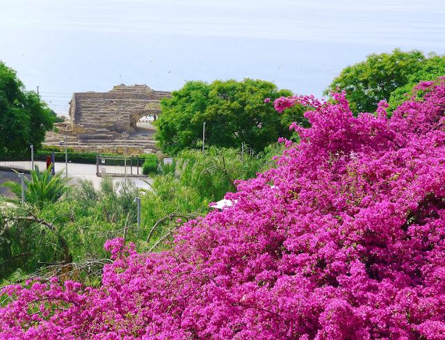 Jardines-anfiteatro-Tarragona