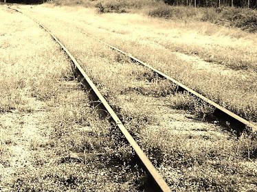 Idiot Tracks