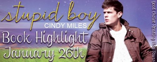 {Excerpt+Giveaway} Stupid Boy by Cindy Miles @cindymilesbooks