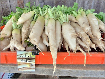 Daikon at the farmer's market