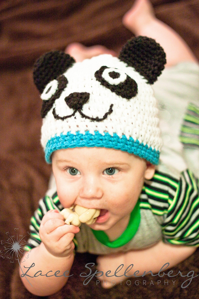 Panda Animal Hat Crochet Pattern Newborn To Woman Dog ...