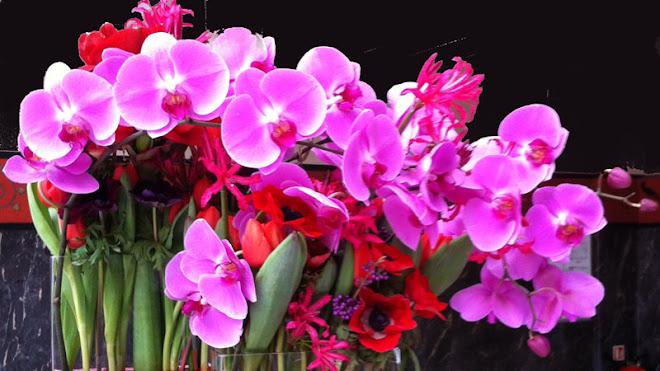 bouquets2