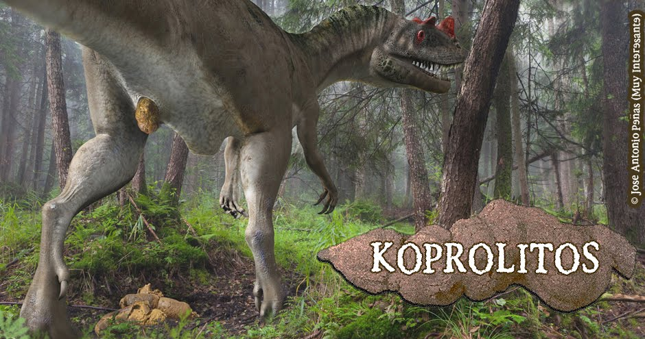 Koprolitos