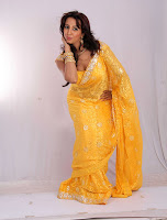 hot, sexy, Sanjana, yellow saree,  cleavage show,