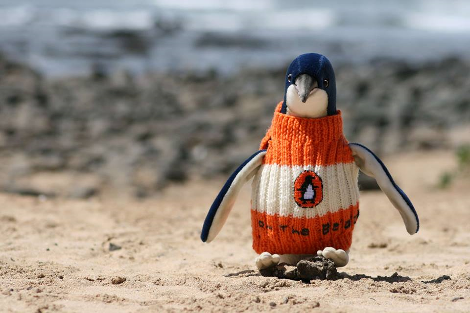 Shop for customizable Penguins In Sweaters clothing on Zazzle. Check out our t-shirts, polo shirts, hoodies, & more great items. Start browsing today!