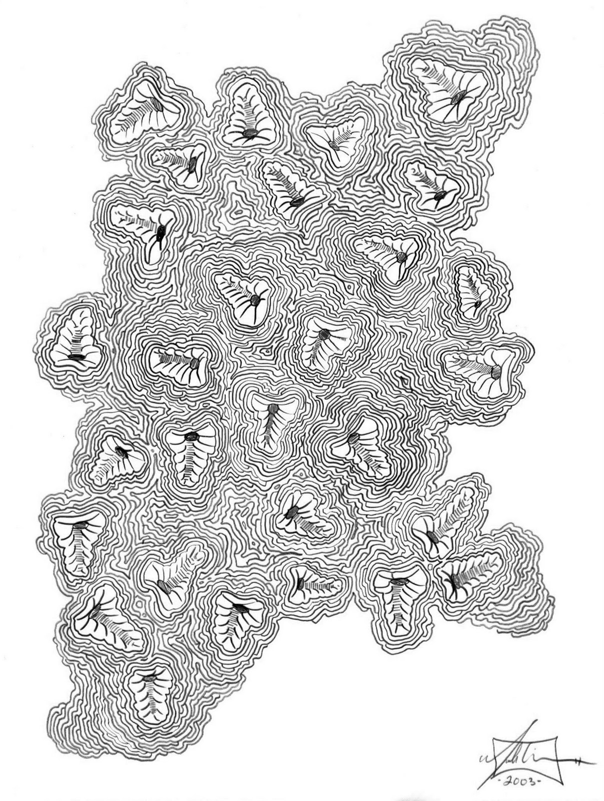 brain coral drawing - photo #36
