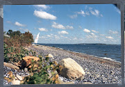 Prudence Island Beach After Hurricane Bob Sept 1991 (beach after hurricane bob sept )