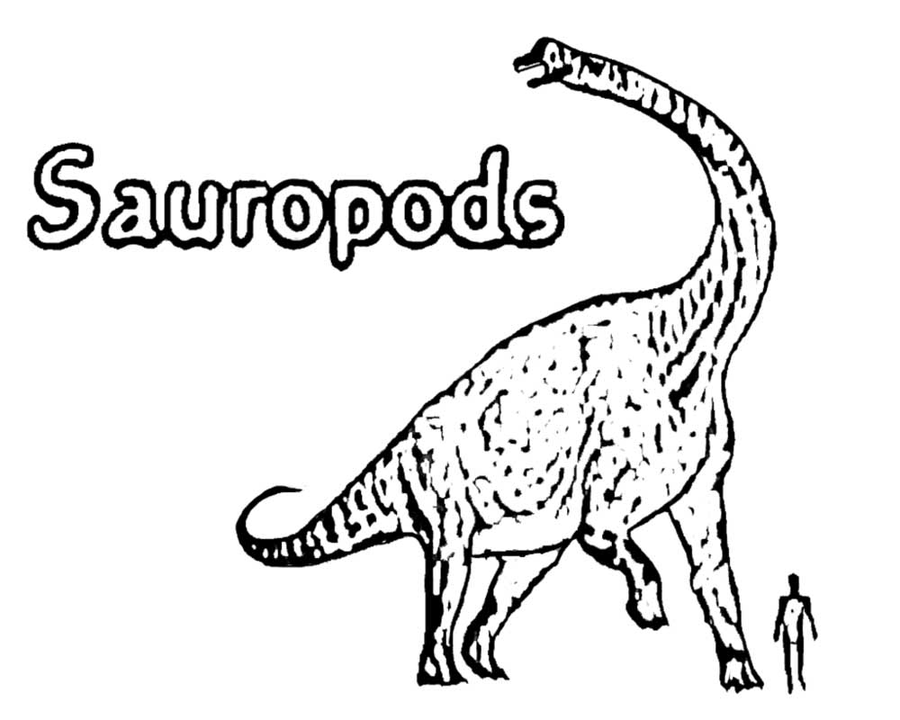 Simple Prehistoric Science Park Jurassic World Long Neck Sauropods Dinosaur Outline Coloring In Page