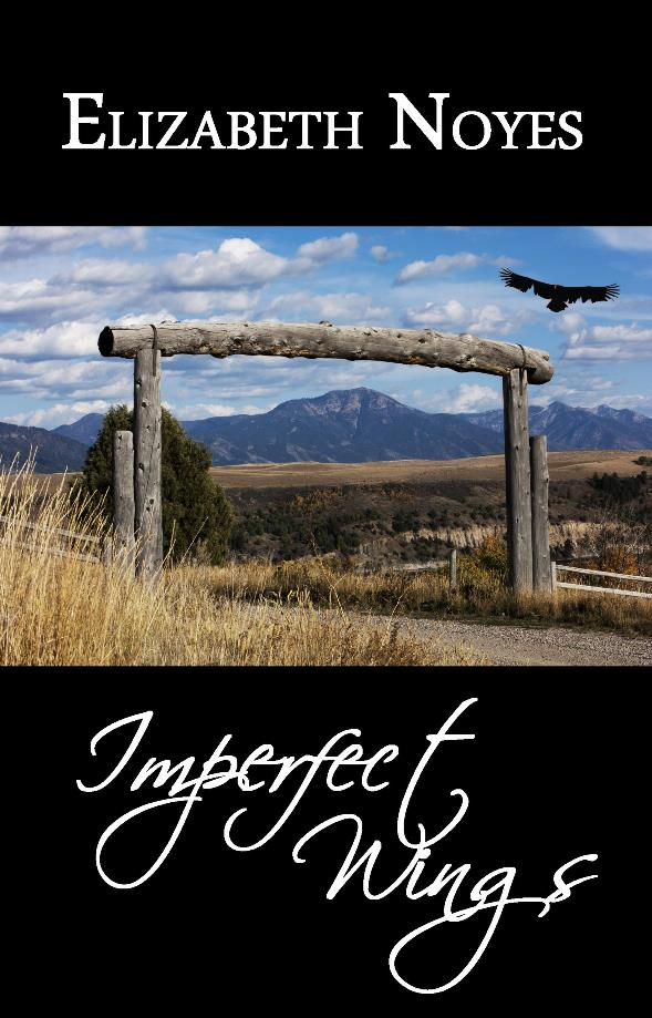 Imperfect Wings