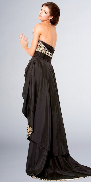 Stylish Elegant Dress With Tiger Tail