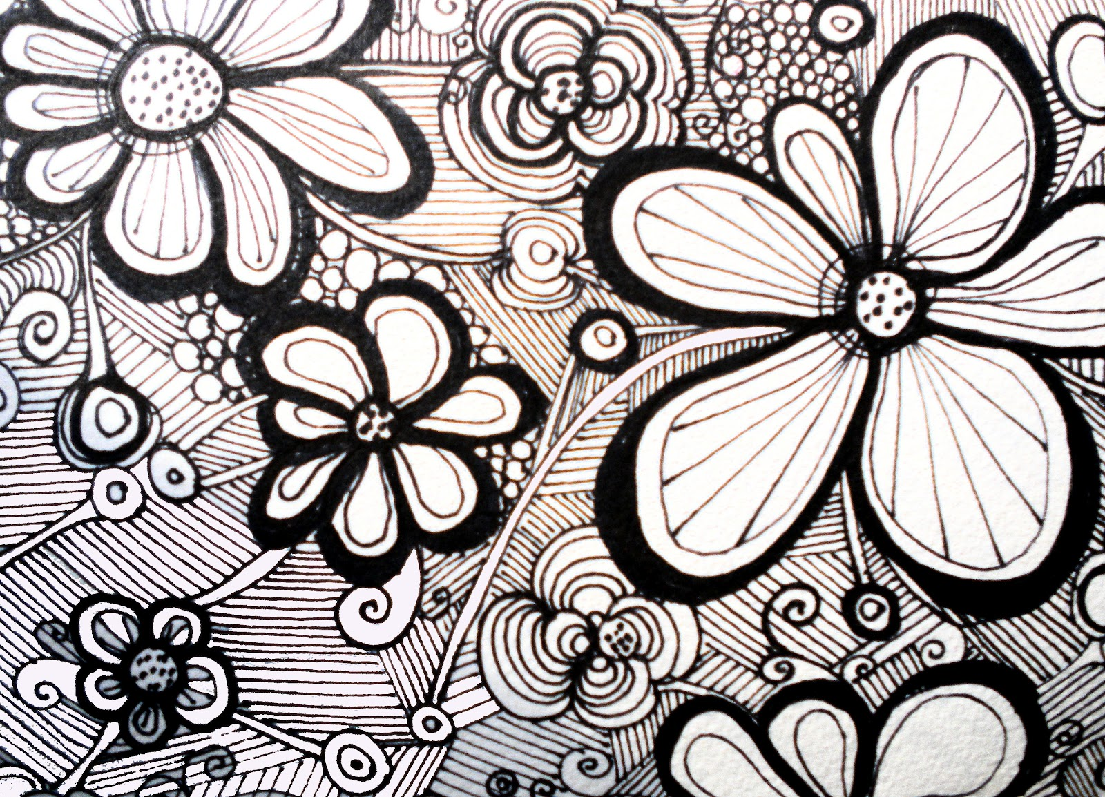 Zentangle design flowers black and white and with added - Flower black and white design ...
