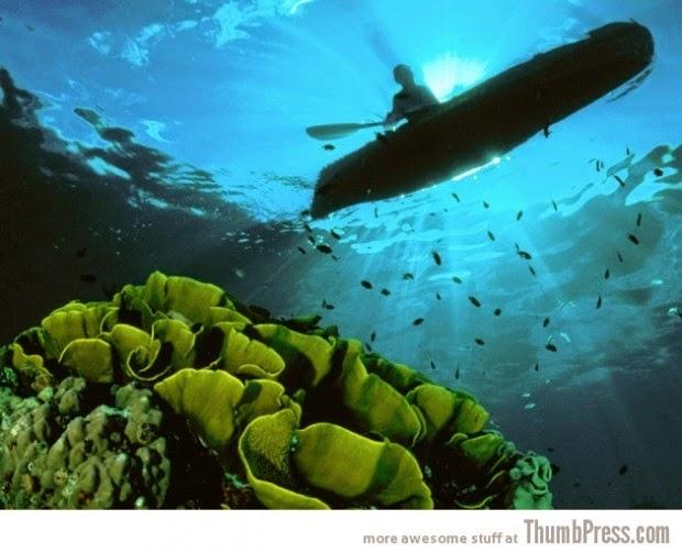 Solomon Islands picture