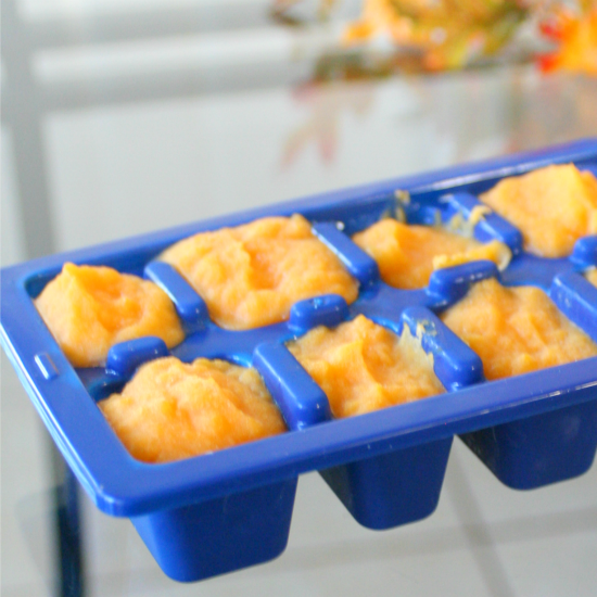 Butternut Squash And Rotisserie Chicken Baby Food Jordans Easy