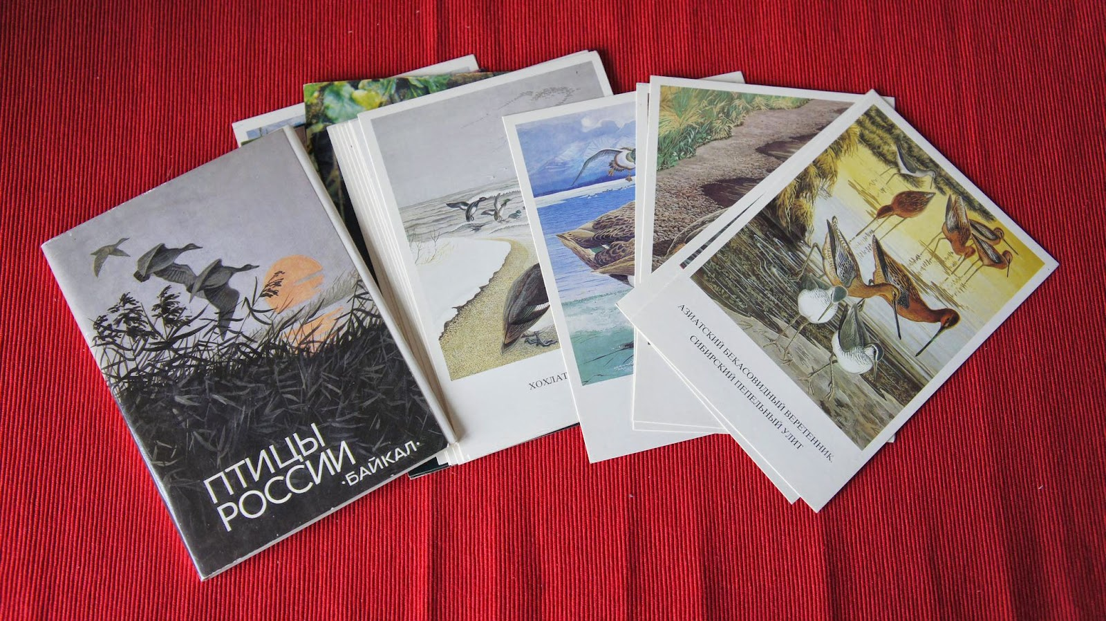 Коллекции открыток 88