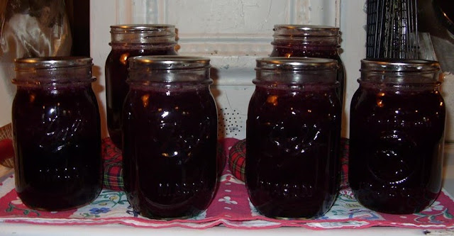 Canning Blueberries