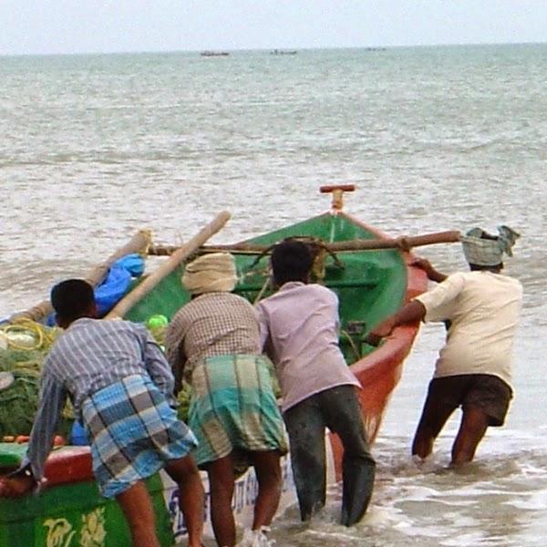 SL Navy Arrests Four Indian Fishermen