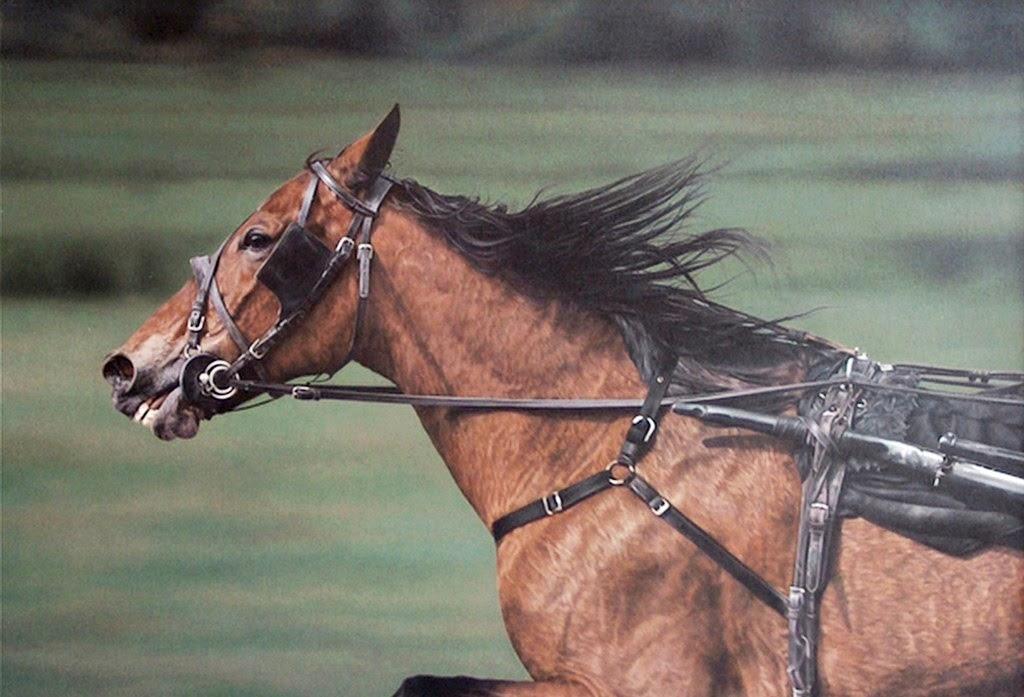 pinturas-realistas-de-caballos