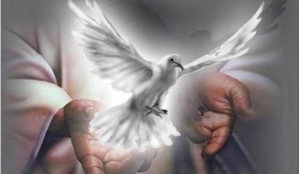 Mon p re le colonel annonce de deces for Hopital canape vert haiti