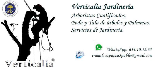 Verticalia Jardinería. Arboristas, Guardianes de los Arboles.